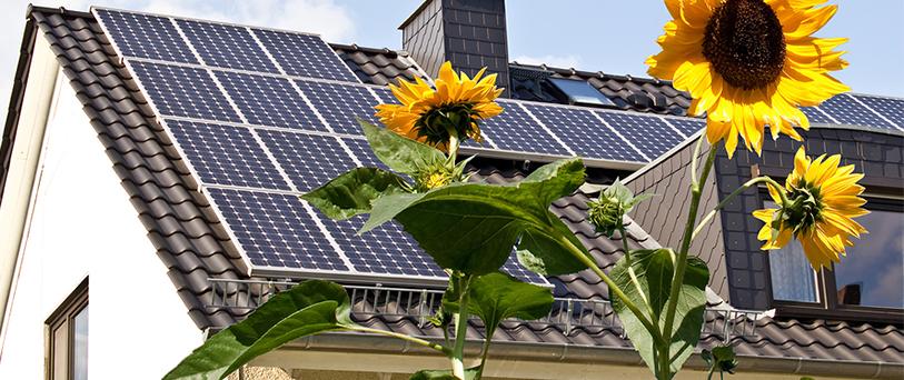 Questioning solar