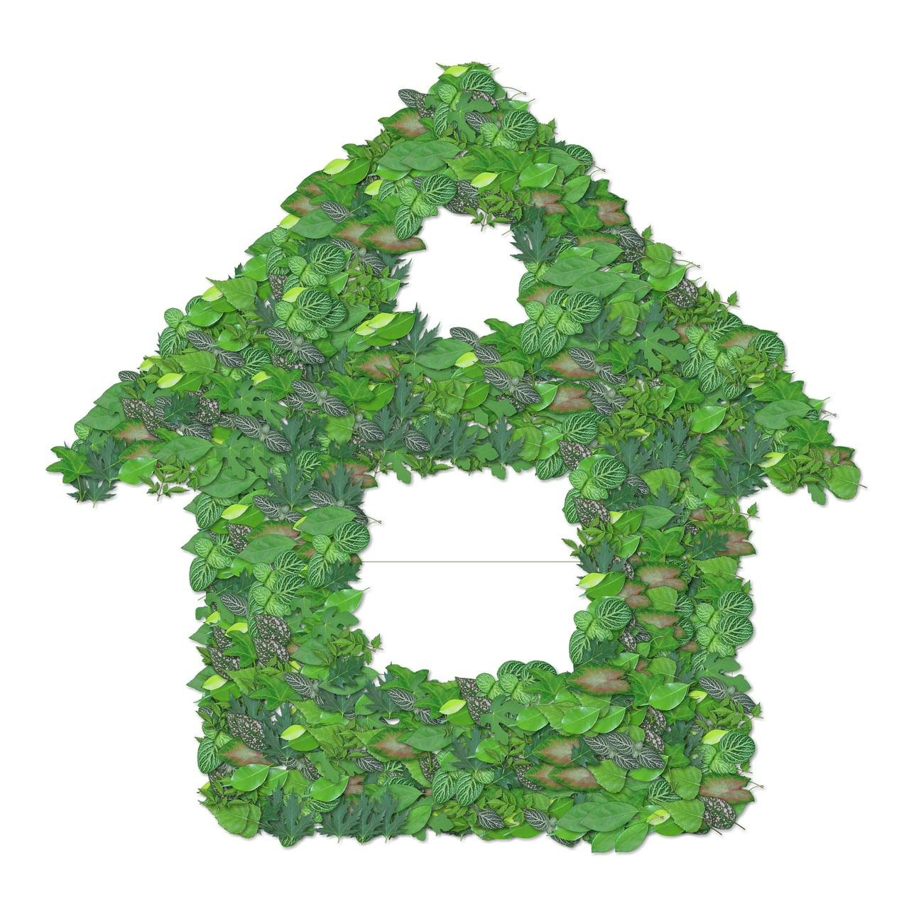 how to make your home more green and environmentally friendly