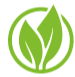 Next Energy Solutions Ltd