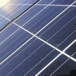 Trees felled to increase efficiency of solar panels
