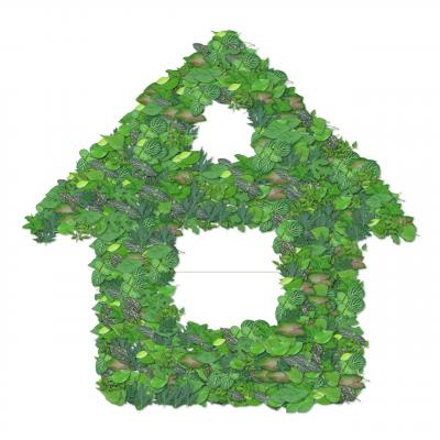 5 Ways to Go Green at Home and Why You'd Want To